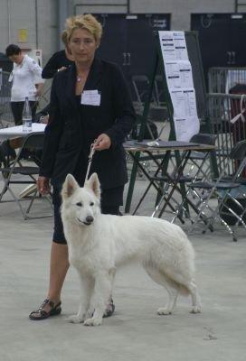 Dogshow Goes 15 mei 2011 Enjoy