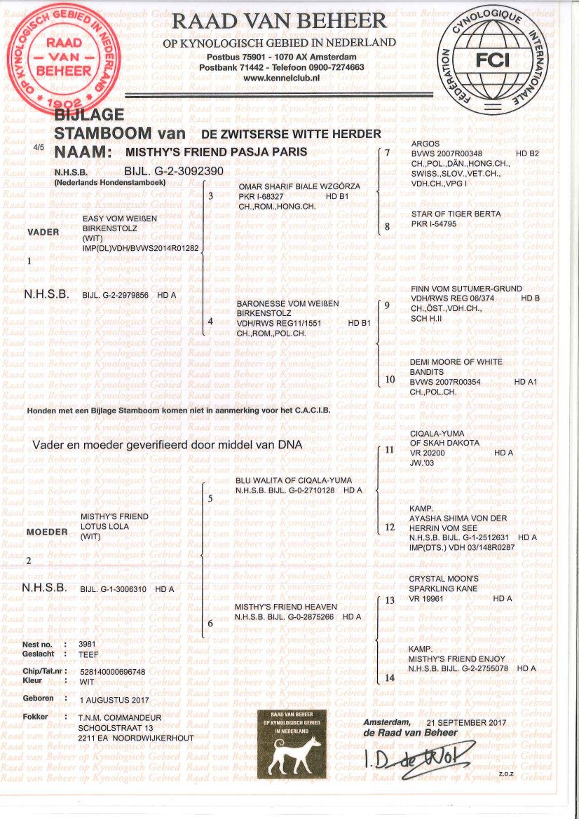 Stamboom Misthy's Friends Pasja Paris