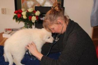 6 februari 2013 dierenarts bezoek