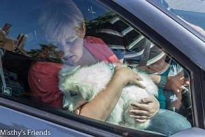 Misthy's Friend Joop - Jay in de auto