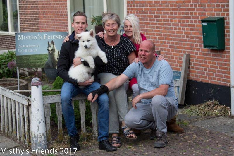 Zwitserse witte herder Misthy's Friends Ody