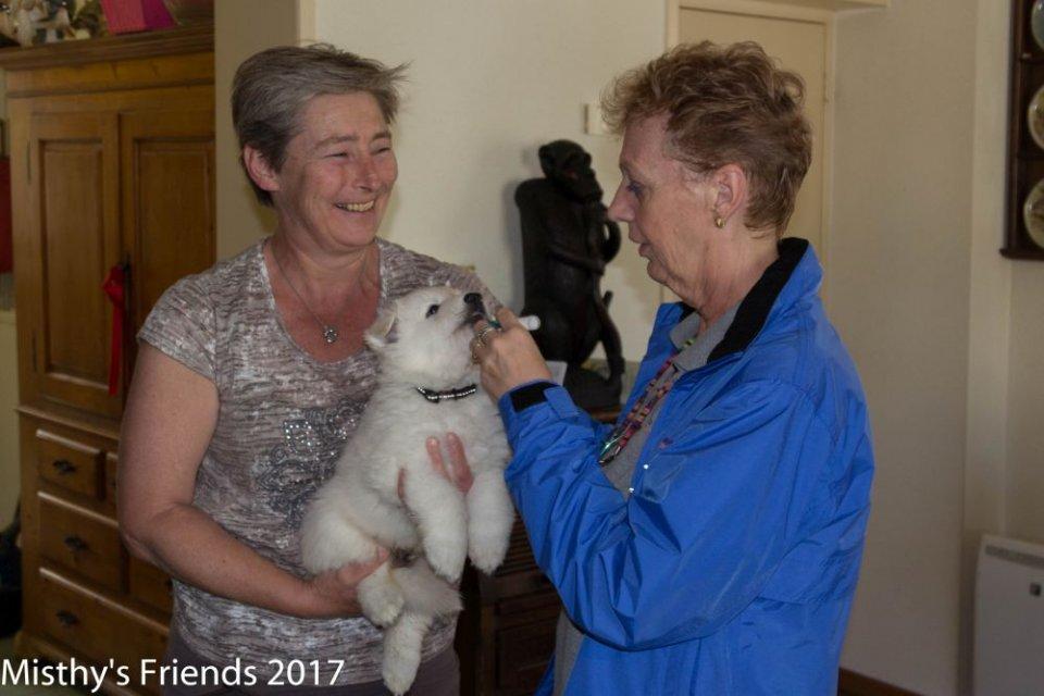 Bezoek dierenarts op 10 mei 2017 pup wit Solar