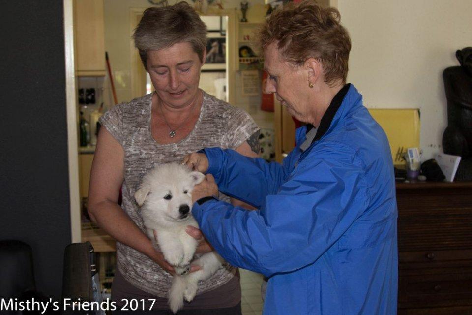 Bezoek dierenarts op 10 mei 2017 pup Reu Groen Ody