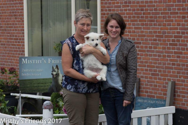 Zwitserse witte herder Misty's friends Puck bij vertrek