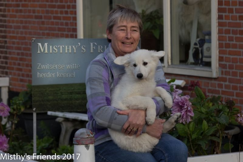 Zwitserse witte herder Misthy's Friend pup Pacific Silver met Thea