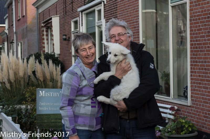 Zwitserse witte herder Misthy's Friend pup Pacific Silver bij het vertrek naar nieuwe baasje