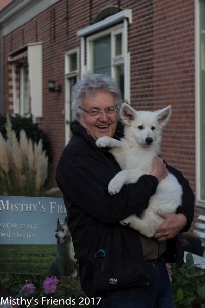 Zwitserse witte herder Misthy's Friend pup Pacific Silver met nieuwe baasje