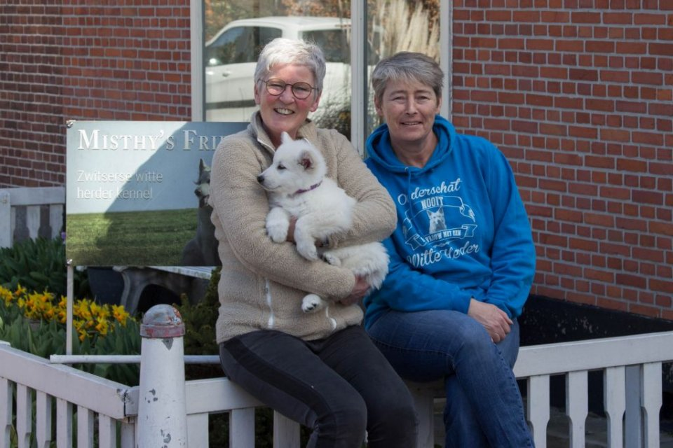 Zwitserse witte herder Misthy's Friends bij het vertrek