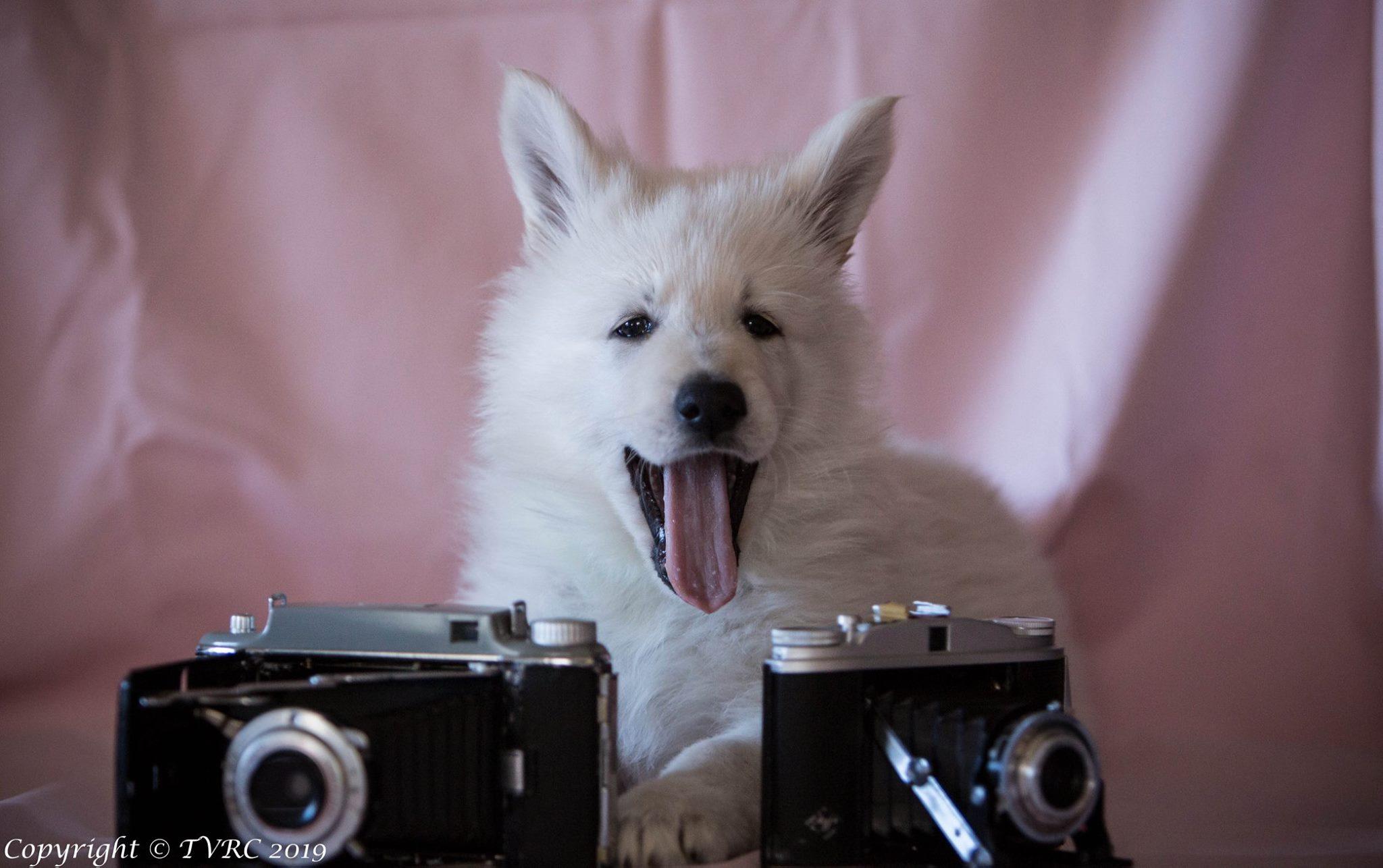 Misthy's frineds Saar als foto model