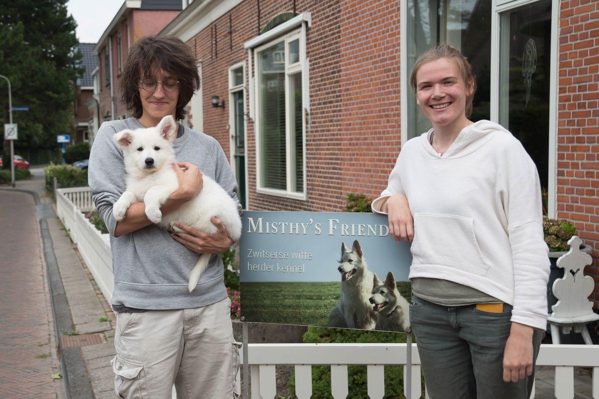 Zwitserse witte herder pup Raeye