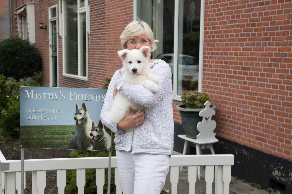 Zwitserse witte herder pup Raiza bij vertrek