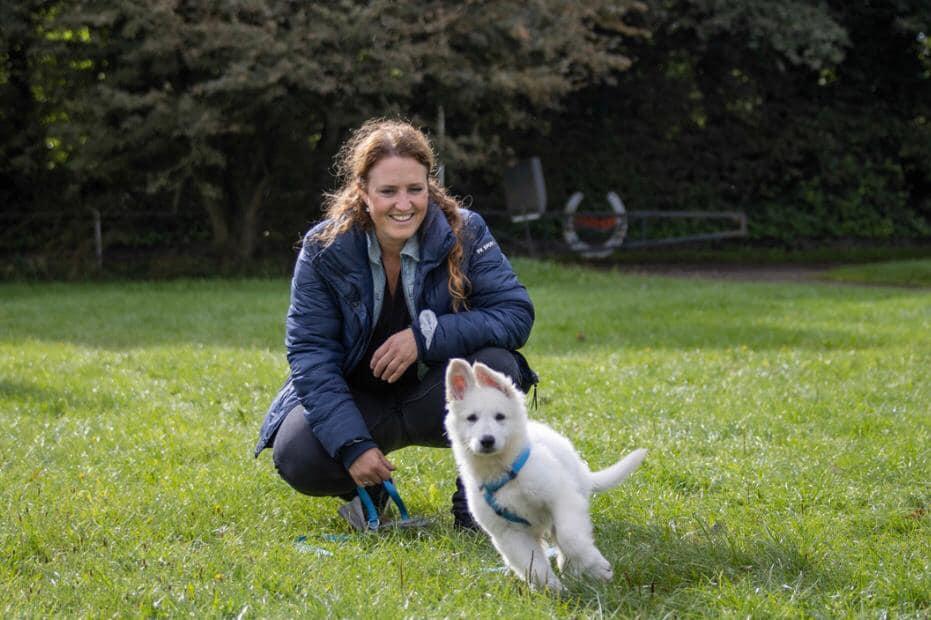 Zwitserse witte herder pup Roxy Pippa na de training september 2020