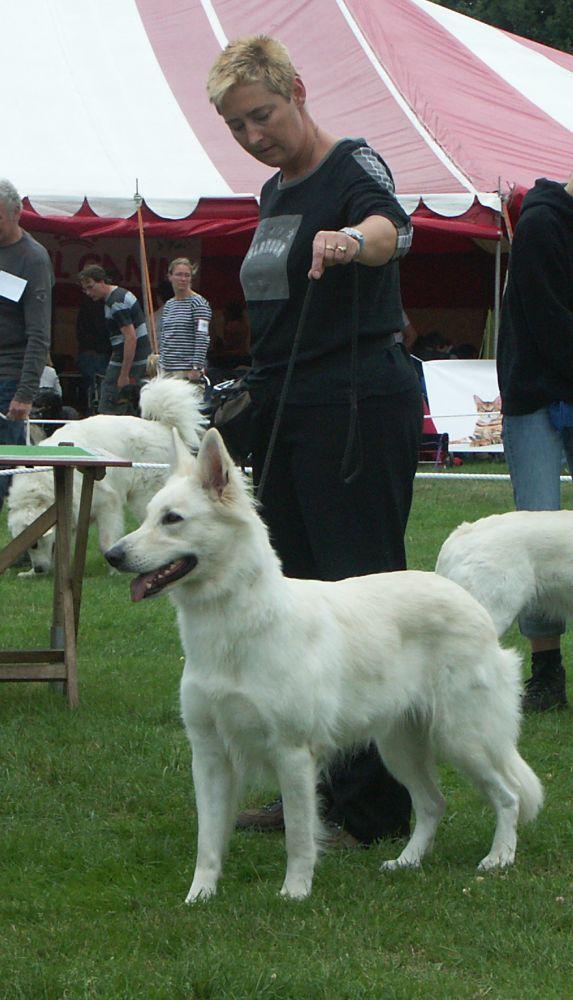 Limburgia Hondenshow te Echt 1 juli 2007